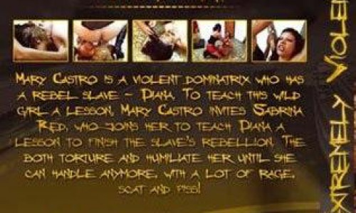 Sd241 Extremely Violent Scatdomination MFXmedia